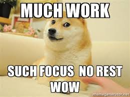 modalert-focus-doge
